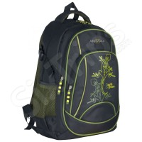 Стилна раница National Geographic Agile & Green AN-09